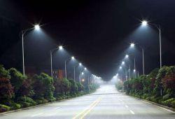 O βιο-φωτισμός των πόλεων ίσως είναι το μέλλον